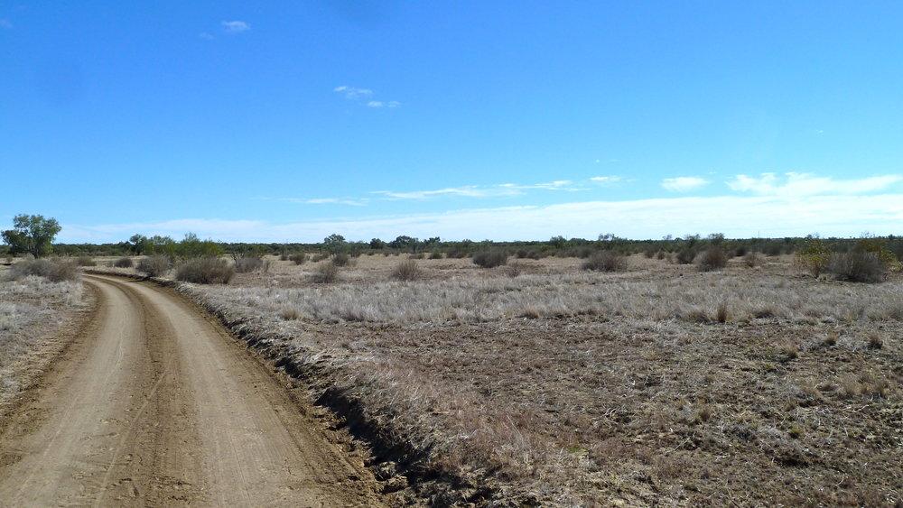 Outback near Windorah, Far West Queensland