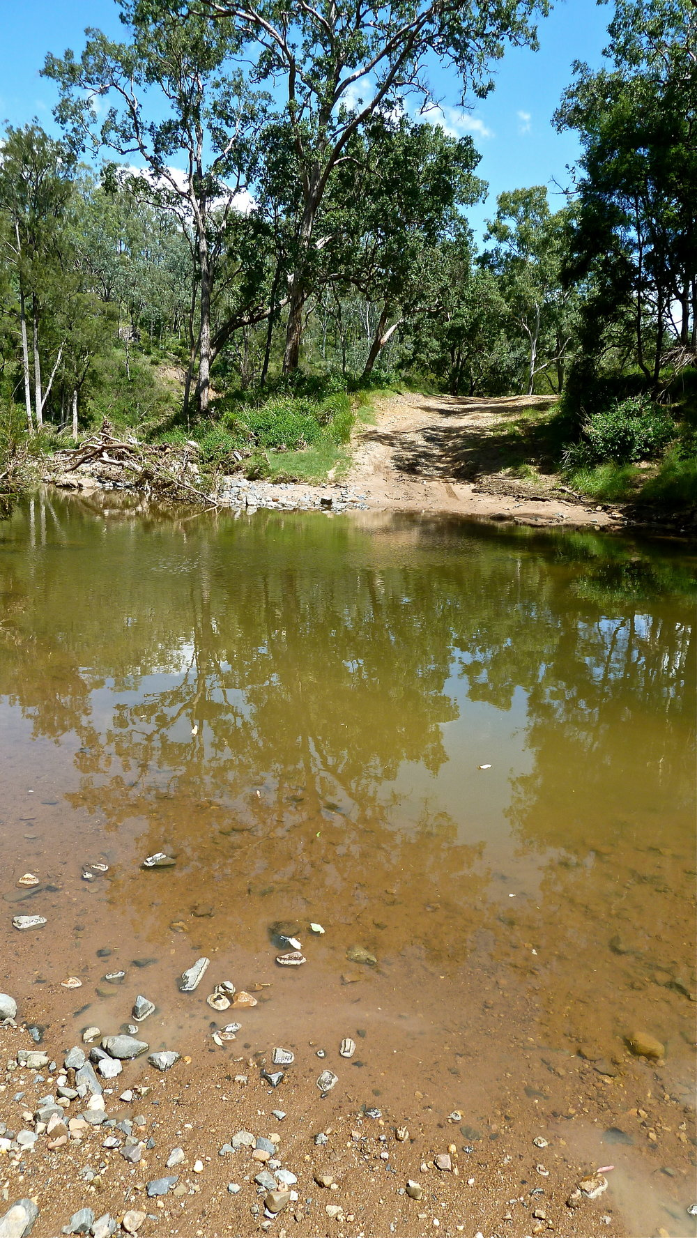 Mar:  in search of the source of the Brisbane River, near Jimna QLD