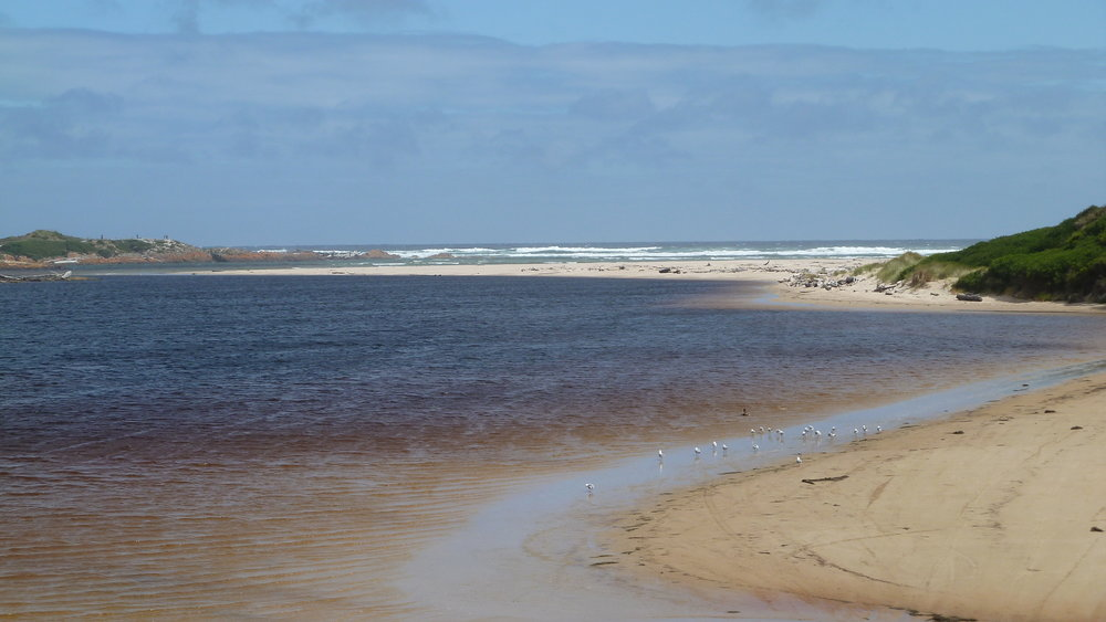The mouth of the Arthur River and the ocean