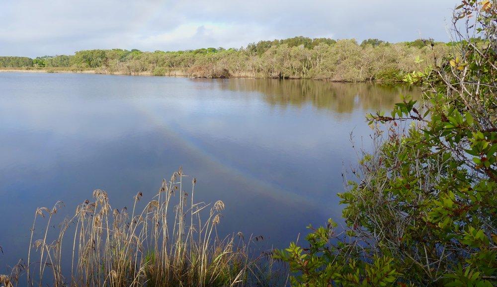Tallow Lake