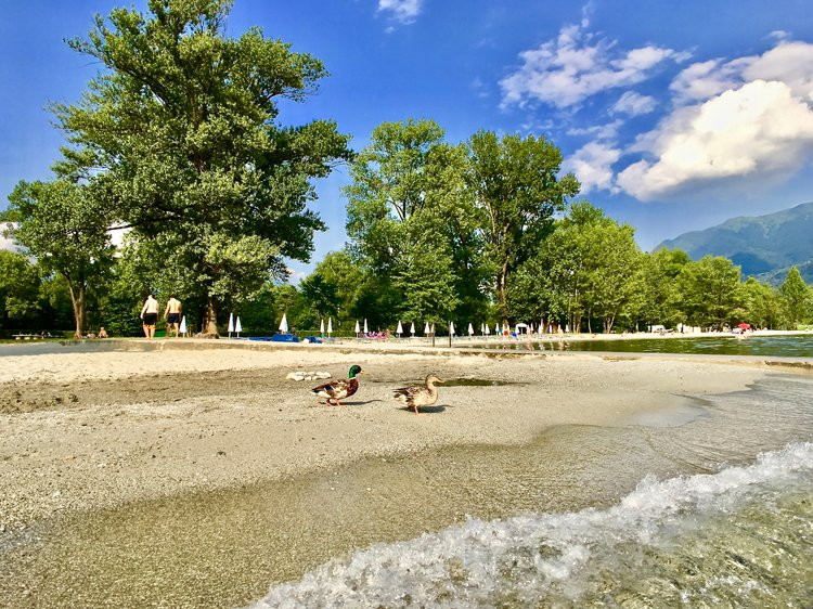 Beach at Lido Ascona, Ticino, Switzerland