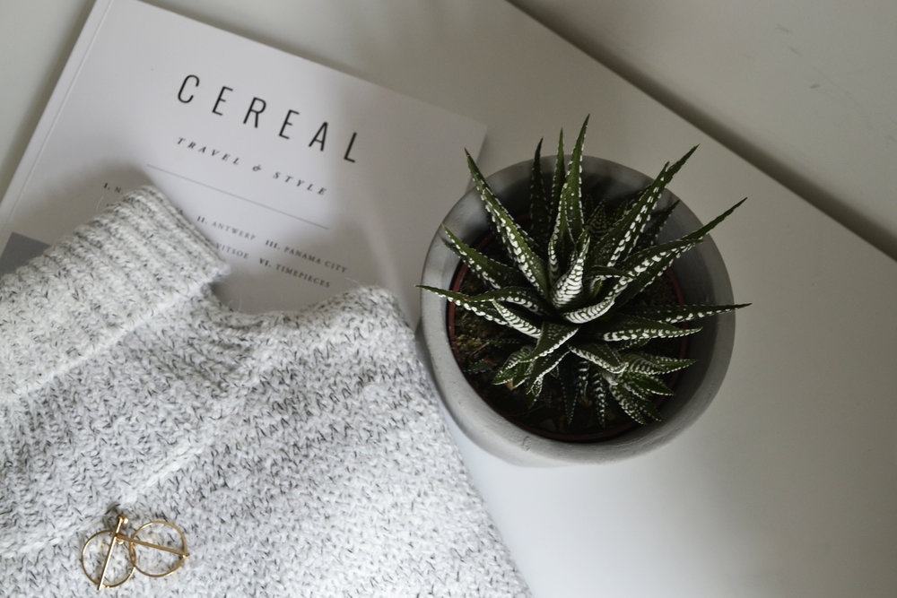 Knit/ OSKAR  Earrings/ ACCESSORIZE  Planter/ GEO-FLEUR