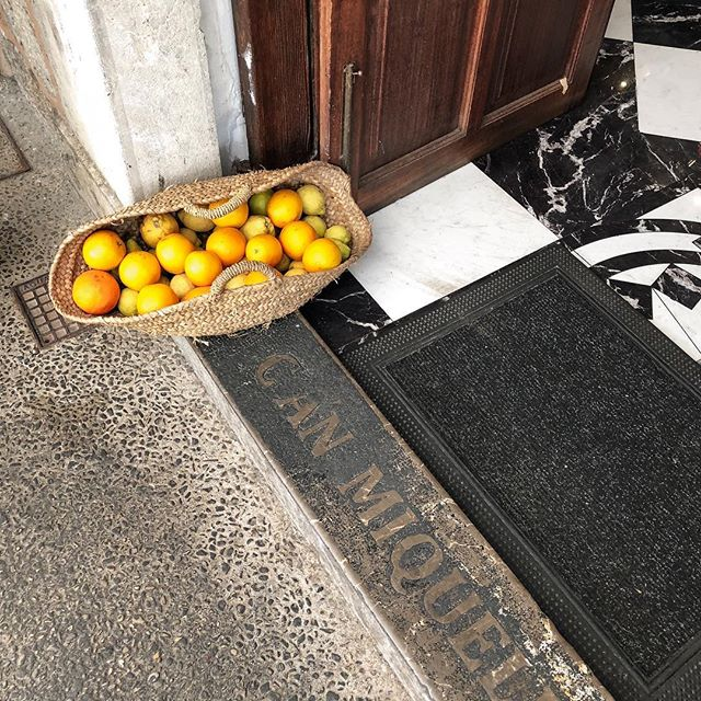 When life hands you lemons. Take a photo of it. Especially when wedged between concrete and black and white marble floors. #outside_project #mallorcaisland #portdesoller