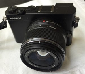 Panasonic GM-5 with 12-32mm, f/4-5.6 lens