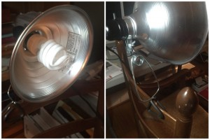 Inexpensive clamp light with a daylight fluorescent bulb.