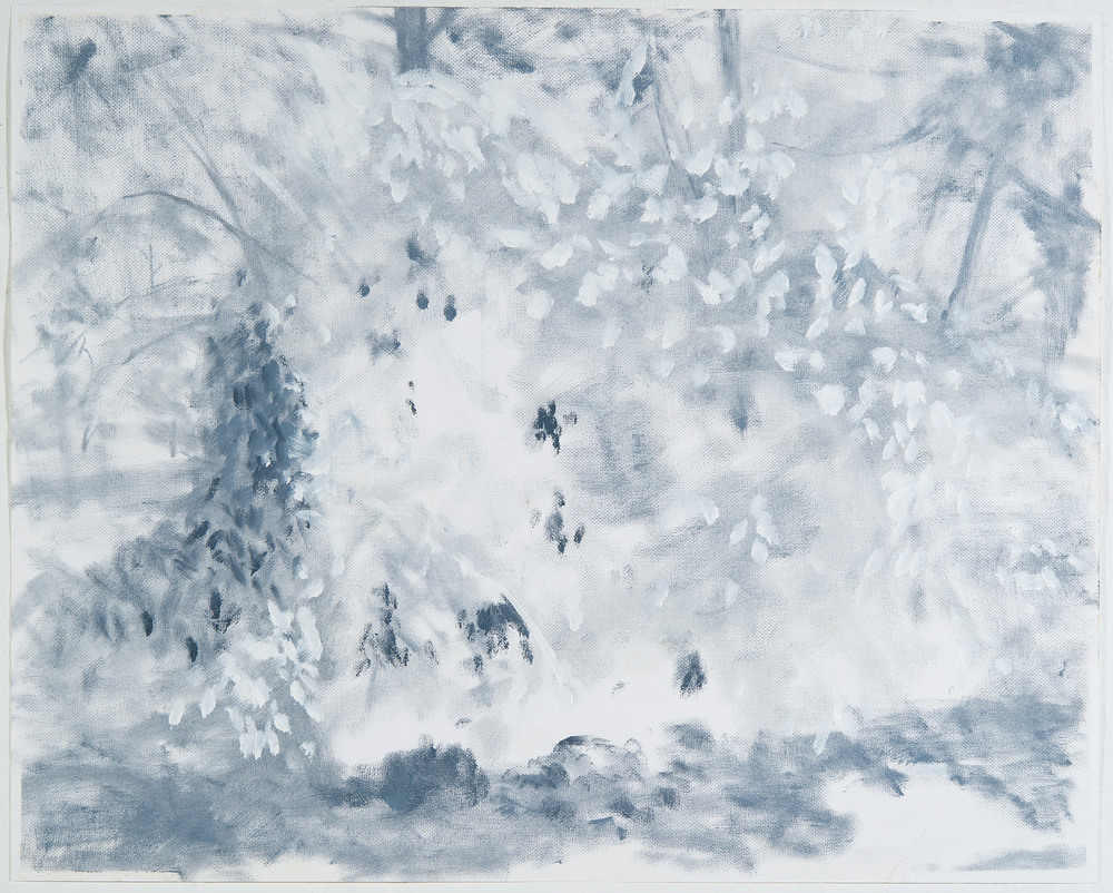 Study For Shrub On Wheels   Oil on canvas 41 ×51 inches 16 ×20 cm 2014