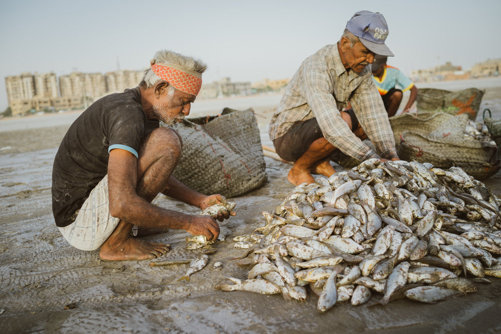 Fishermen sorting their catch at Clifton Beach, Karachi, Pakistan.