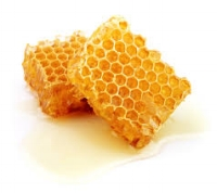 Anti-inflammatory, antibacterial & antioxidant properties.  very moisturizing, can help protect the lips from the harmful rays of the sun. Very moisturizing. Beeswax contains natural emulsifiers, which help retain moisture in the skin making it especially helpful for dry lips and chapped lips. Contains antibacterial agents which can help prevent painful inflammation that comes with infection. Raw Honey - Humectant. Draws moisture to the skin naturally.