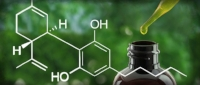 "Full Spectrum vs Isolate:    ""As the term suggests, full spectrum CBD comes with all the of the cannabinoids present in the plant. In hemp oil, this includes a long list of cannabis compounds, such as Cannabinol (CBN), Cannabicyclol (CBL), Tetrahydrocannabivarin (THCV) and Cannabichromevarinic Acid (CBCVA). It is crucial to point out that small amounts of THC can also be found in hemp. The government regulates concentration levels at  0.3 percent  (dry weight) for ""industrial hemp"" products, resulting in very limited cerebral stimulation. When CBD is in isolate form, it is separated from other cannabis compounds in the source plant. It was previously believed that CBD isolates were more potent and concentrated than full spectrum CBD. This assertion was eventually debunked by a study from the Lautenberg Center for General Tumor Immunology in Jerusalem.  In the 2015 study , researchers were able to prove that full spectrum CBD is capable of offering greater levels of relief, by focus groups. By comparison, the group that was given CBD isolate did not experience the same level of relief at higher doses.   Based on the comparison above, full spectrum hemp oil is more effective than CBD isolate, making it highly recommended for patients interested in holistic approaches to medicinal cannabis treatments.""   - Source: https://www.massroots.com/news/full-spectrum-cbd-vs-isolate      How Does CBD Affect the Endocannabinoid System?       ""The endocannabinoid system exists to respond to endogenous cannabinoids produced by the human body. However, scientists have learned that the system will also recognize and respond to cannabinoids from external sources, including the phytocannabinoid  cannabidiol . According to the  National Institutes of Health , manipulating the endocannabinoid system by introducing external cannabinoids like CBD could be useful in treating a variety of medical ailments. CBD and Cannabinoid Receptors - The endocannabinoid system includes two primary types of receptors that bind to cannabinoids: CB1 and CB2. Unlike THC, which fits directly into the CB1 receptor, cannabidiol does not fit into either type of receptor perfectly. Instead, it stimulates activity in both receptors without actually binding to them. This results in changes within any cells that contain either receptor. Because CB1 and CB2 receptors are present throughout the body, the effects of CBD are systemic.    According to Project CBD, research has also shown that CBD counteracts the psychoactive effects of THC by inhibiting its effects on CB1 receptors. CBD's Indirect Effects on the Endocannabinoid System - When introduced into the endocannabinoid system, CBD causes an increased release of 2-AG, one of the endogenous cannabinoids. Like CBD, 2-AG stimulates both CB1 and CB2 receptors, which enhances the overall effect on the body. Studies published by the  National Institutes of Health  have shown that cannabidiol also inhibits the activity of fatty acid amide hydroxylase, or FAAH. This slows the deterioration of anandamide, another important endogenous cannabinoid found naturally within the body.   Other Effects of CBD -   In addition to its impact on the endocannabinoid system, CBD also affects the body in other ways. For example, CBD binds directly to a G-protein coupled receptor known as TRPV-1, which is responsible for mediating body temperature, perceptions of pain and inflammation. CBD also activates serotonin receptors. Furthermore, studies conducted by the  California Pacific Medical Center  have shown that cannabidiol has the power to inhibit the ID-1 gene, which is known to cause several aggressive cancers, including certain cancers of the breast, brain, lungs, ovaries and pancreas. Implications in Medicine -   Cannabidiol's impact on the endocannabinoid system, as well as its other effects on the human body, indicate that this substance may be useful in treating a variety of medical conditions. For example, the medical community has already identified that THC can be an effective treatment for multiple ailments, including the side effects of chemo. Because CBD inhibits the negative effects of THC, it stands to reason that administering the two substances together could be even more beneficial than treatment with THC alone. Likewise, cannabidiol's stimulation of the endocannabinoid system promotes homeostasis within the body, reduces sensations of pain and inhibits inflammatory processes. Finally, CBD's effects on other genes and systems, such as its inhibition of the ID-1 gene, indicate that it may be an ideal treatment for certain types of effective cancers. Medical research involving the possible uses of CBD is ongoing, the list of conditions CBD could potentially treat continues to grow. Currently, the list includes the conditions listed above, as well as mood disorders, diabetes, heart disease, glaucoma, asthma, stroke and many more."" -  Source: https://cbdoilreview.org/cbd-cannabidiol/cbd-endocannabinoid-system/"