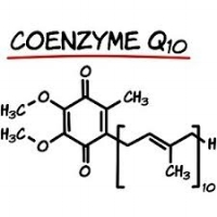 Coenzyme Q10 (CoQ10) is a fat-soluble vitamin-like substance present in every cell of the human body. It's a coenzyme vital to production of energy within cells. It's a powerful antioxidant. Synthesized by the human body, it starts out at low levels when we're very young, reaches its peak in our young adulthood and shows a gradual decline after the age of 20, even as the body's demand for it grows. Topically applied, CoQ10 can penetrate the cell layers of the skin and may attenuate the depth of wrinkles due to photo aging, as well as epithelial cell turnover. Kerotinocyte cells make up the majority of human skins cells & CoQ10 has been shown to protect these skin cells from oxidative DNA damage induce by UV light. CoQ10 supports the body's natural defense mechanism against the damaging effects of free radicals, particularly the lipid per oxidation in skin.