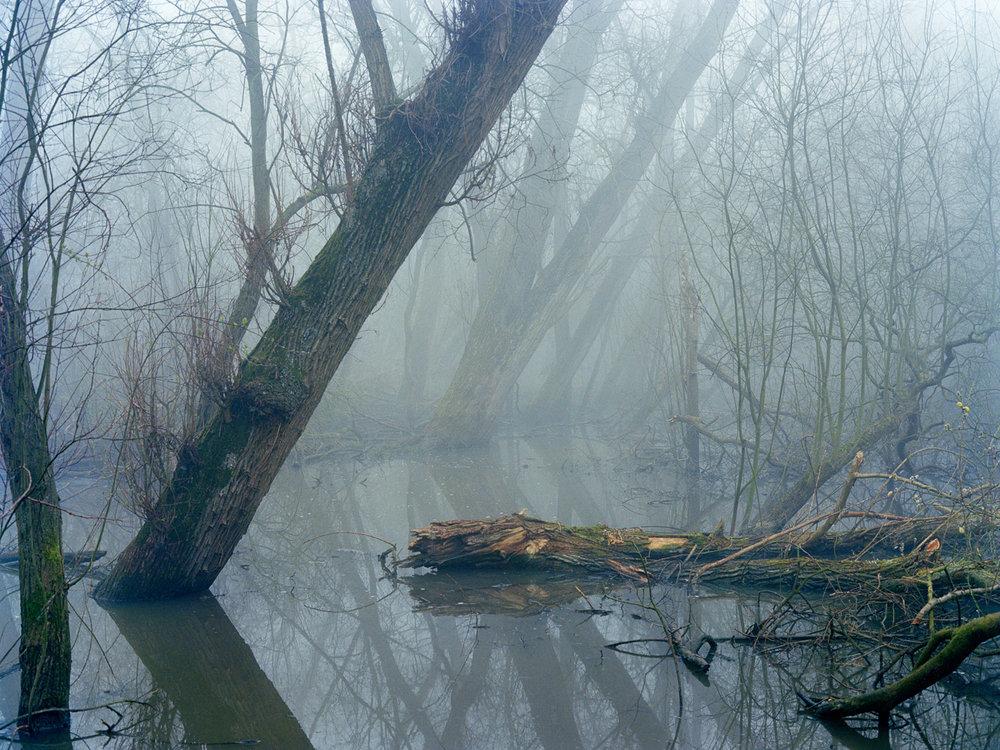 Hackney_Canal_FREYA-NAJADE-3.jpg