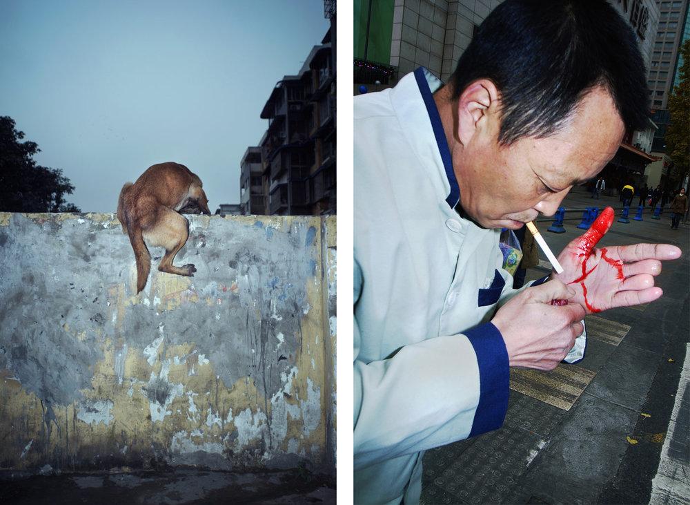 Images © Feng Li.
