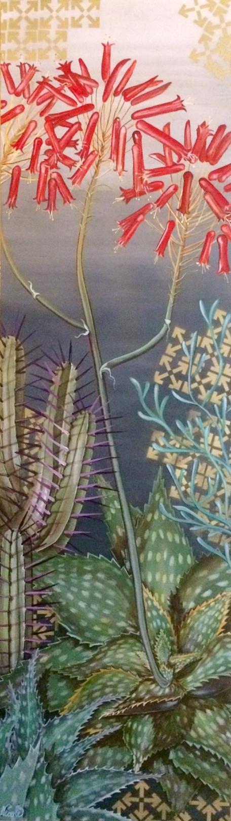 Zebra Aloe & Euphorbia