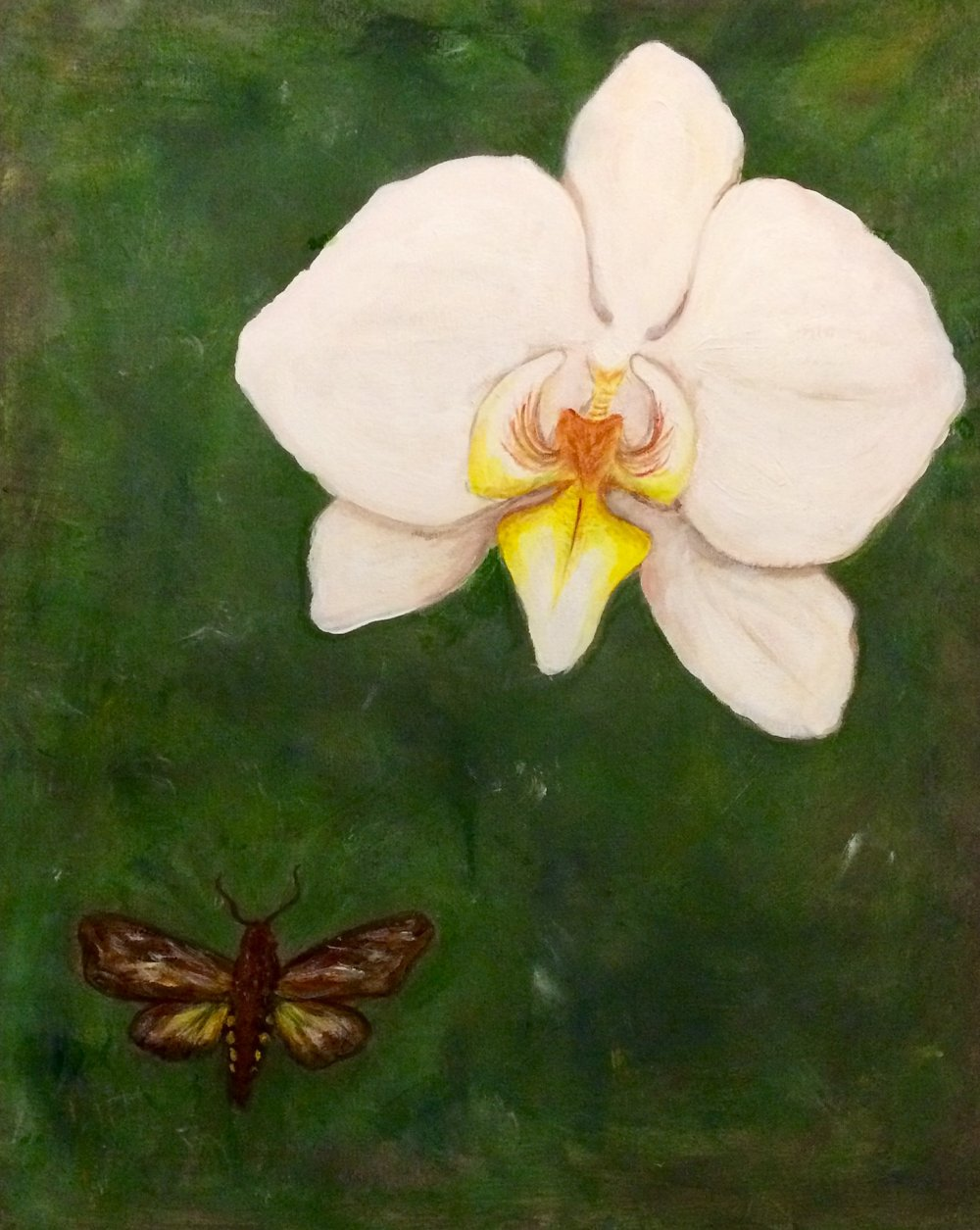 """Like a Moth to a Flame"", 16"" x20"" Acrylic on canvas $200"