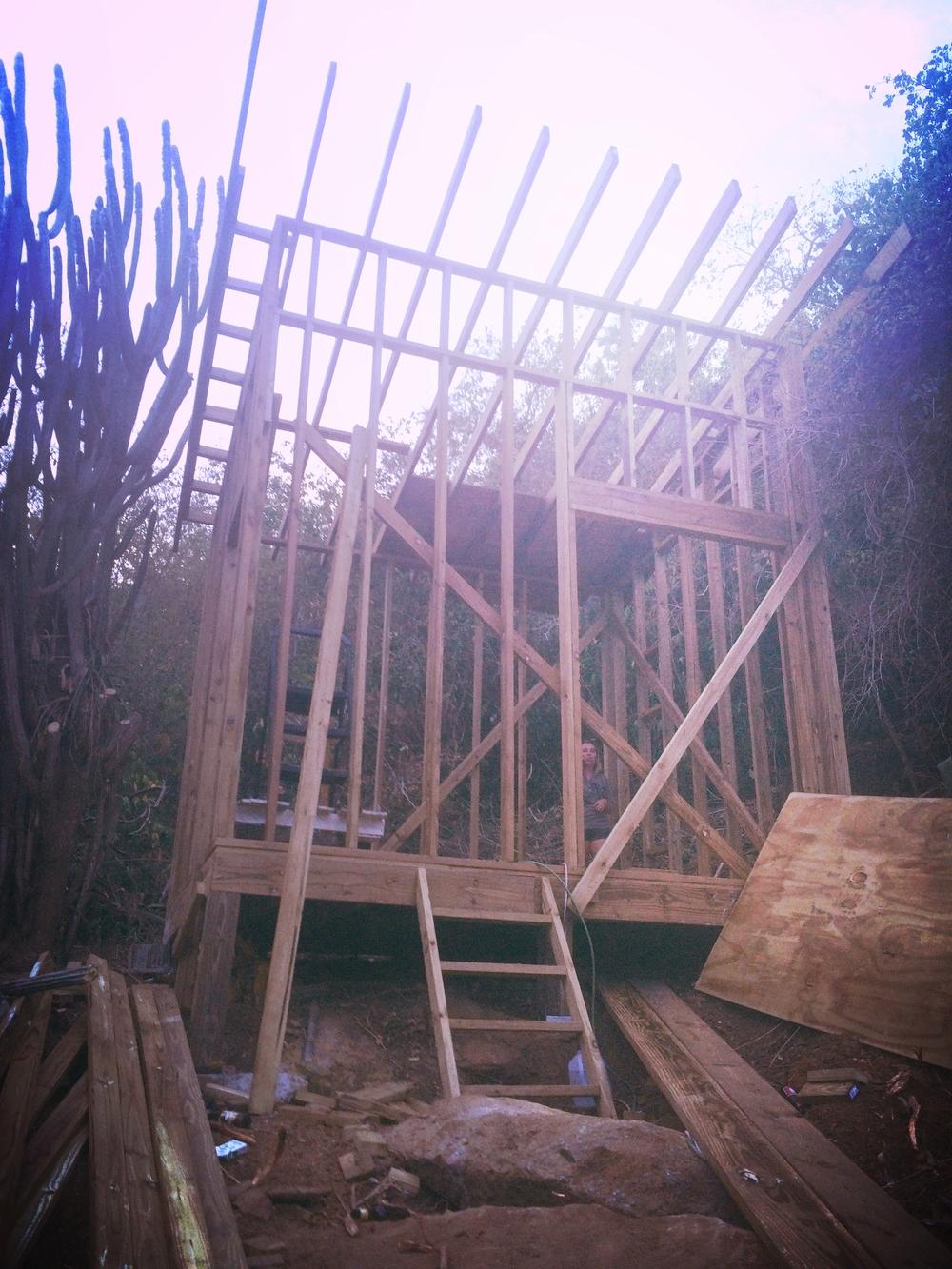 stick build shed.jpg