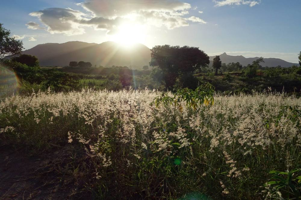 The sun setting across SW Madagascar (Photo: Lucy Barnes)