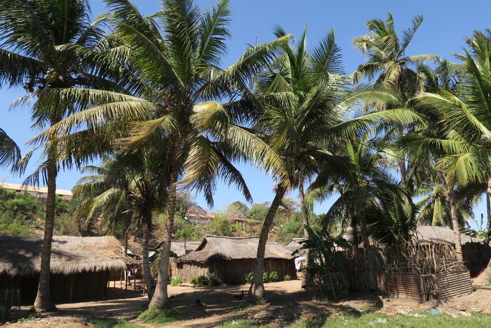 Ambalahonko