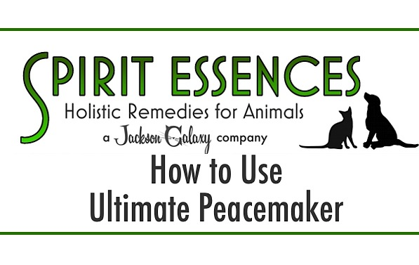 SE How to Use Ultimate Peacemaker