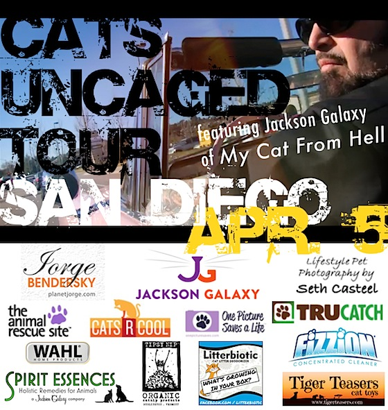 Cats Uncaged Tour no header x560