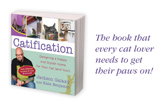 CatificationBook1