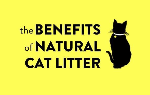 Benefits of Natural Cat Litter