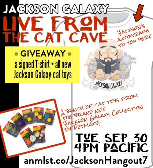 GiveawayLiveFromTheCatCaveSep30