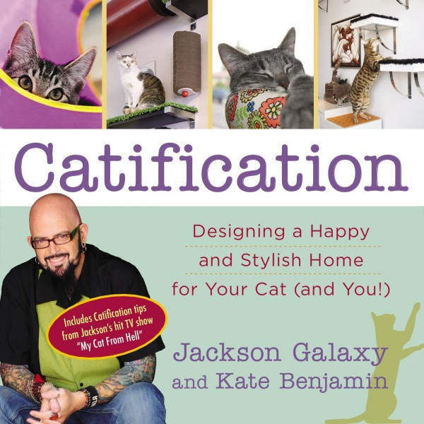 Catification-cover