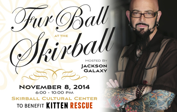 Full Ball Nov 8
