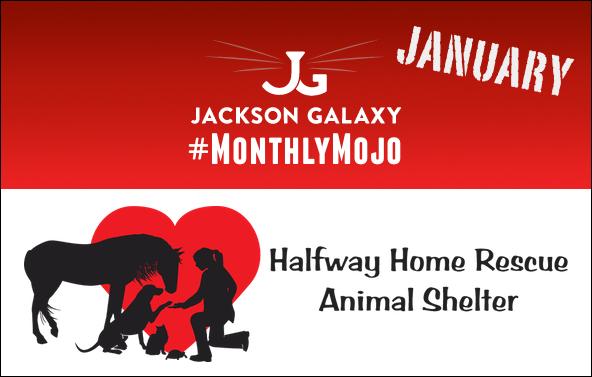 Halfway-Home-slider