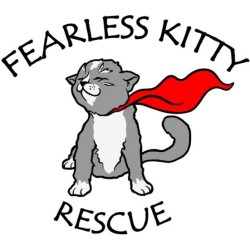 fearlesskitty_sq_logo
