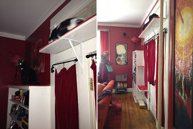 DIY Cat Climbing Shelves and Scratcher