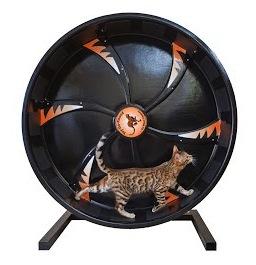 CatWheelCompany