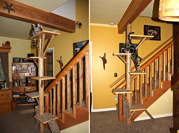 Custom Cat Tree
