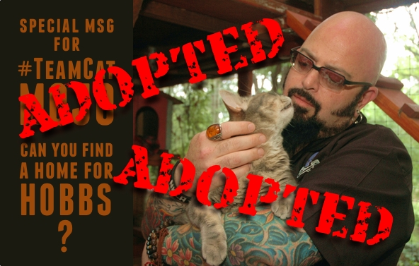 Hobbs Adopted