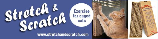 StretchScratch_Recources600x150