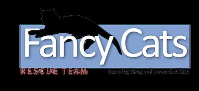 Logo Fancy Cats 400x