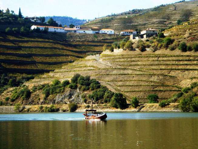 quinta_do_crasto_visto_do_rio_douro_2.jpg