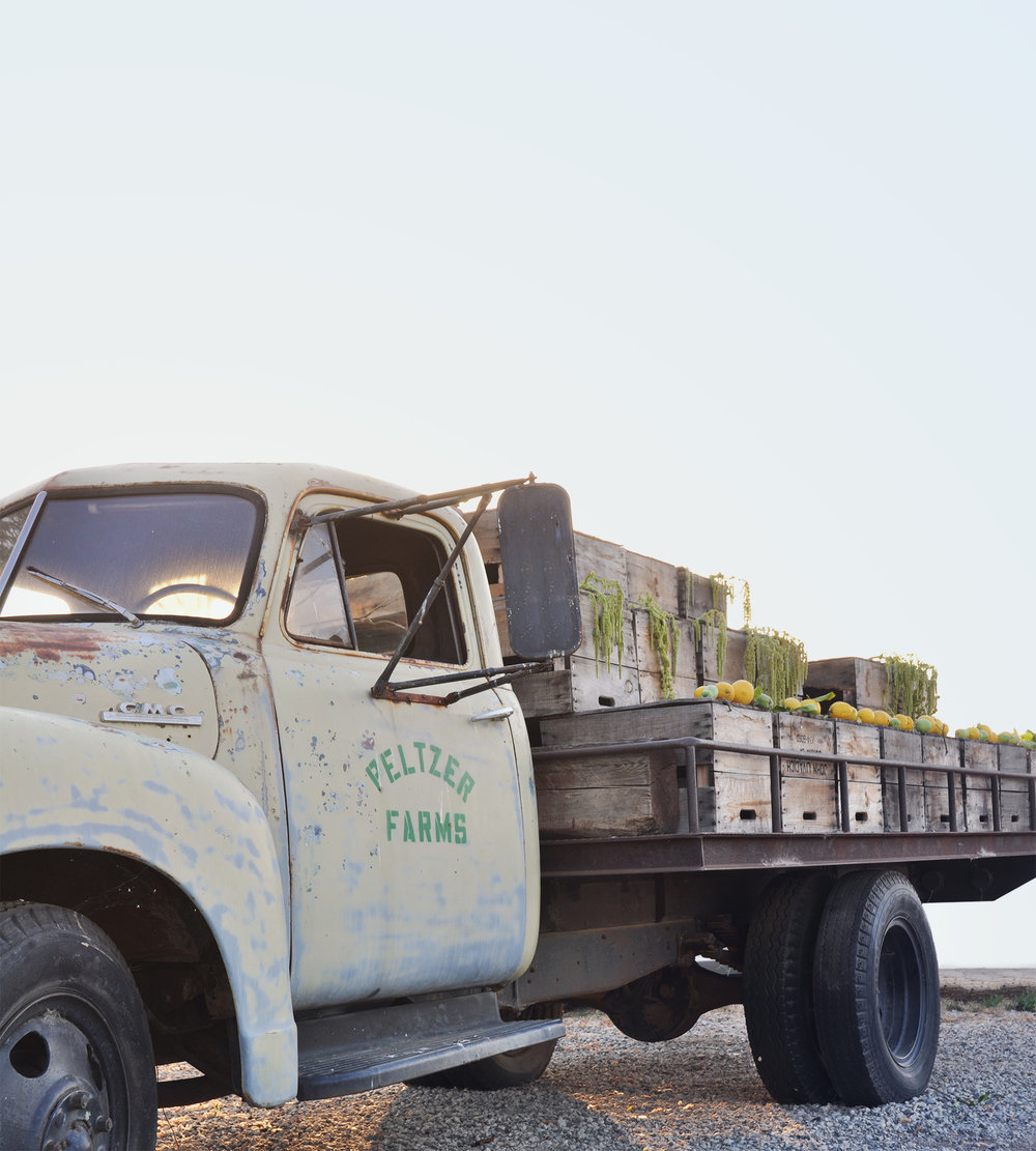 truck-2.jpg