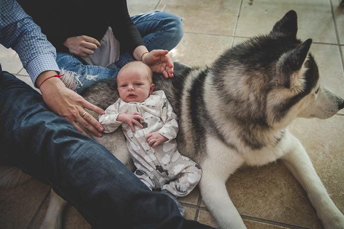 newborn-laying-on-dog-1.jpg