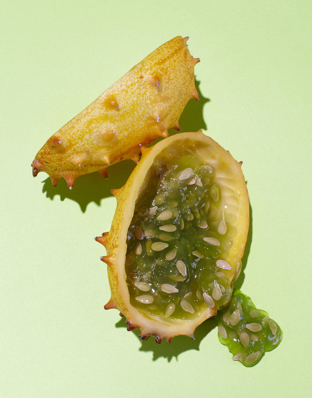 07_HORNED_FRUIT_052.jpg