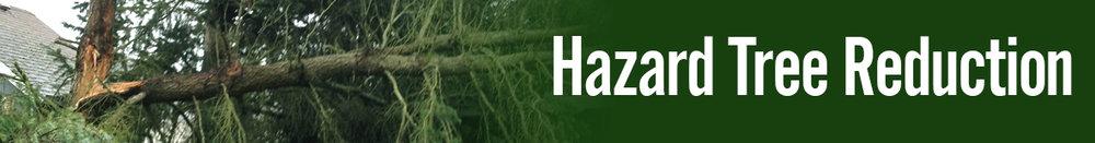 banners - hazard tree reduction2.jpg