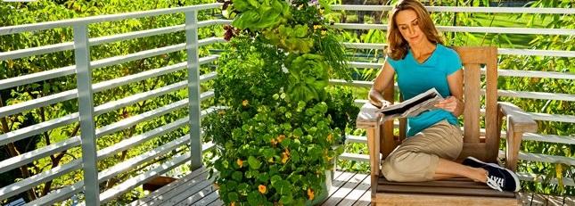 Tower Garden
