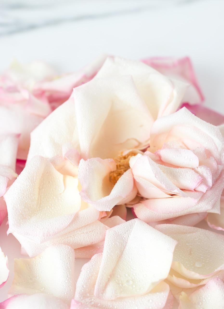 Flowers-7.jpeg