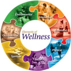 estes_park_edc_wellness