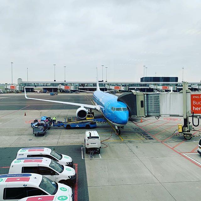 Last flight 👏👏👏
