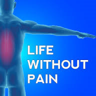 Bioflex life without pain.png