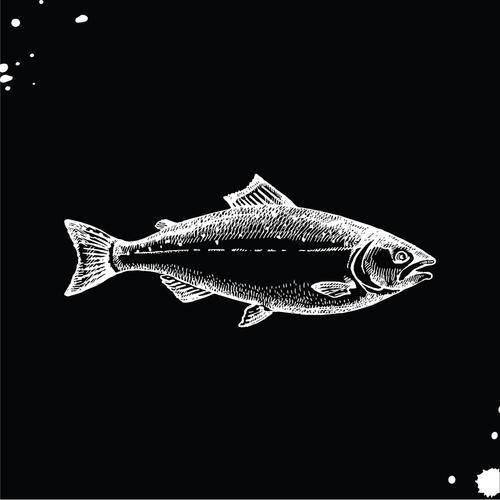 Salmon-01.png