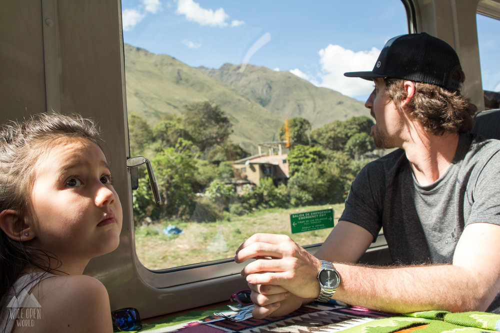 The train to Aquas Calientes