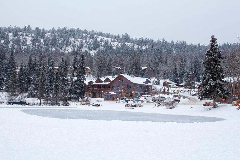 Jasper In January-14.jpg
