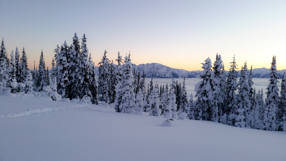 skiing_mckirdy_mountain.jpg